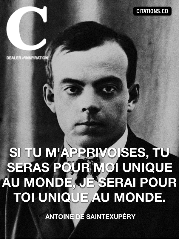 Citation de Antoine De SaintExupéry-5a3945927072b