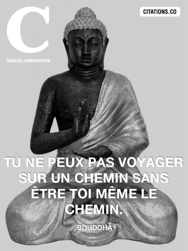 Citation De Bouddha Citation N 675