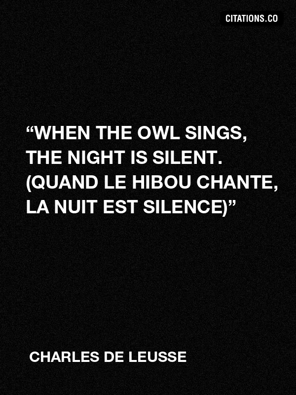 "Charles de LEUSSE - ""When the owl sings, the night is silent. (Quand le hibou chante, La nuit est silence)"""