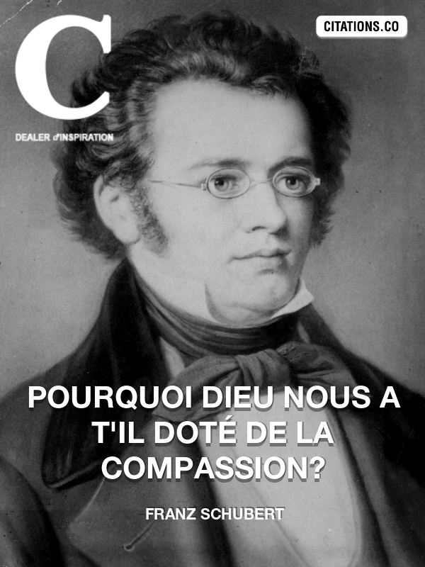 Citation de Franz Schubert-5b03254340977
