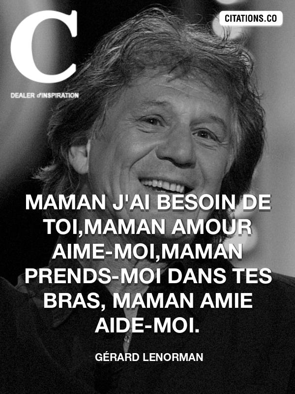Citation De Gérard Lenorman Citation N 8957