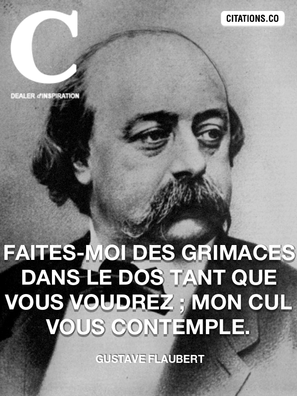 Citation de Gustave Flaubert-5a494fd1c108c