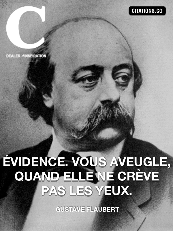 Citation De Gustave Flaubert Citation N 8286