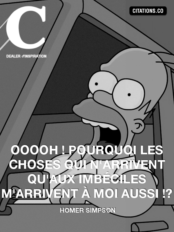 Citation de HOMER SIMPSON-6028737