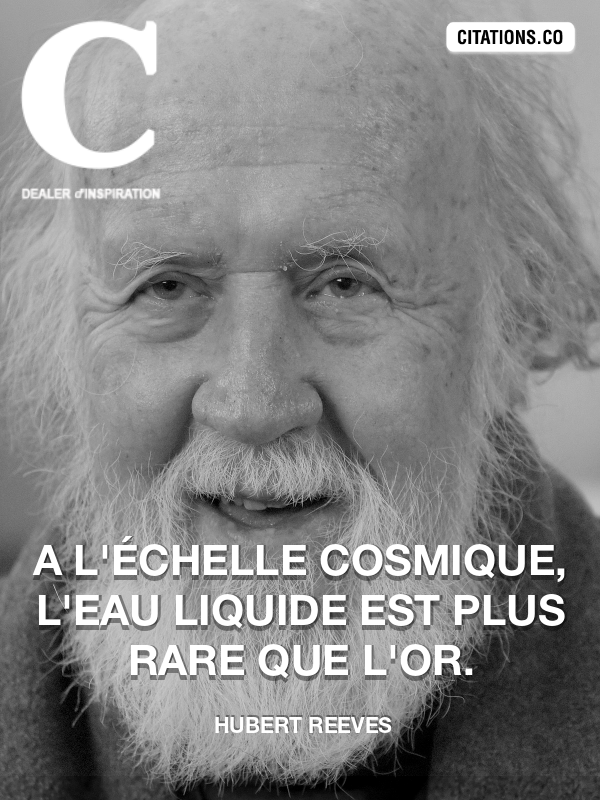 Citation de Hubert Reeves-5af2c6a63add8
