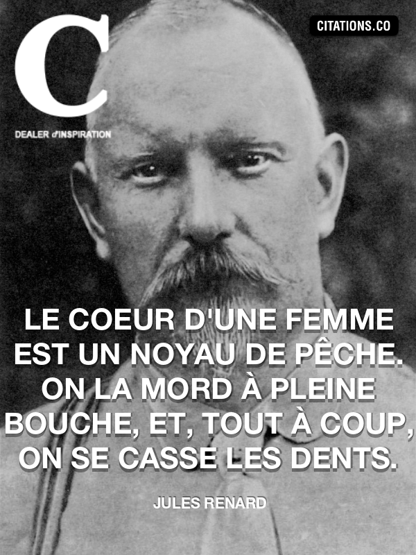 Citation De Jules Renard Citation N 8392