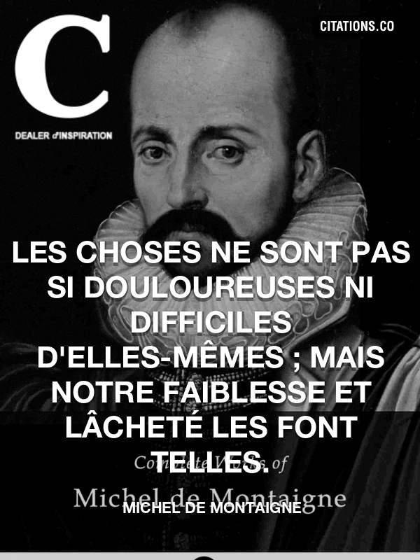 Citation de Michel De Montaigne-5a4b11d296123