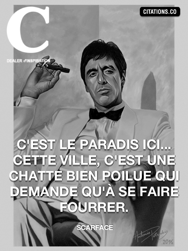 Citation de Scarface-5a707a6c66701