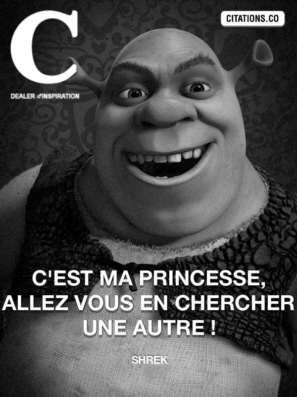 Citation de Shrek-5afd7cd30ff76