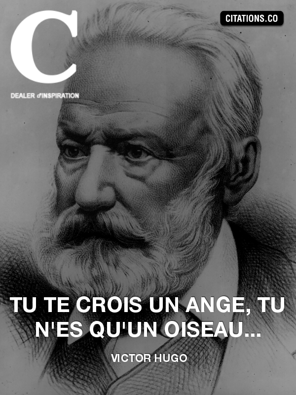 Citation de Victor Hugo-6271839