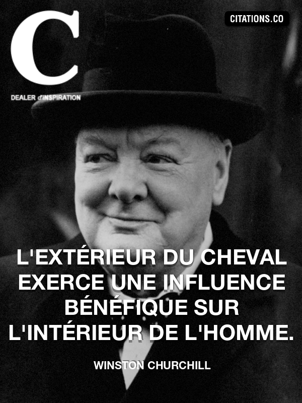 Citation de Winston Churchill-5b411bc318224