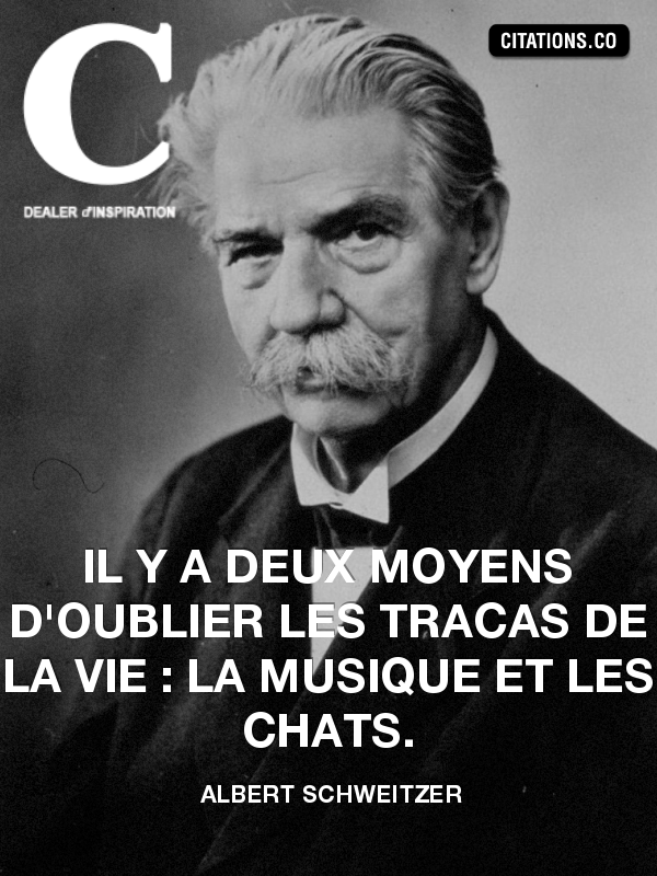 Citation de albert schweitzer-14440896