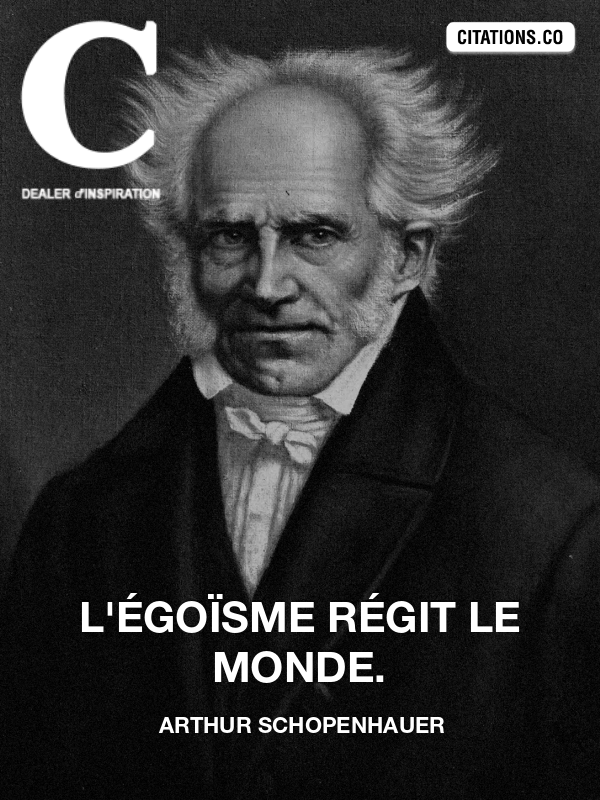 Citation de arthur schopenhauer-11379456