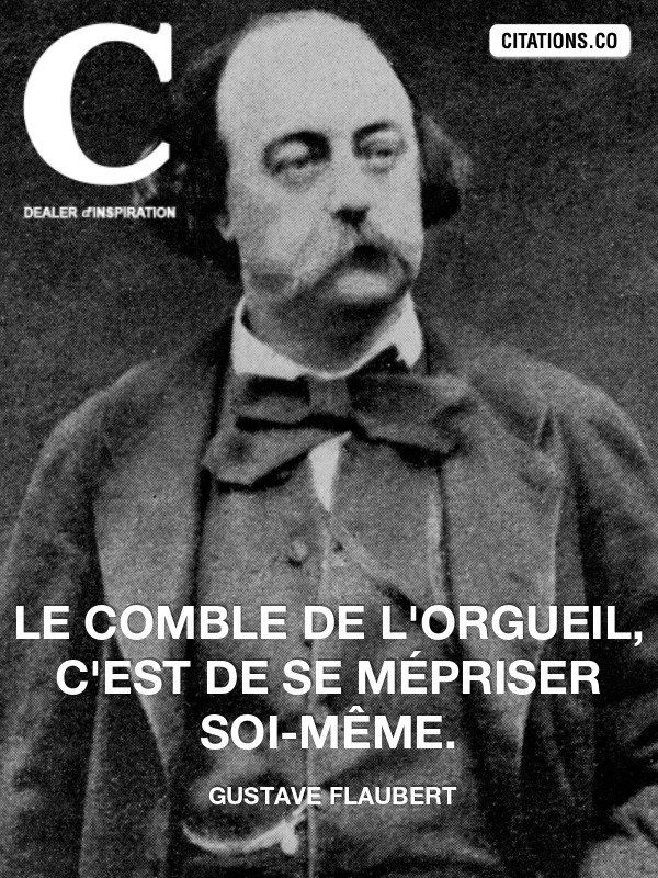 Citation de gustave flaubert-123120