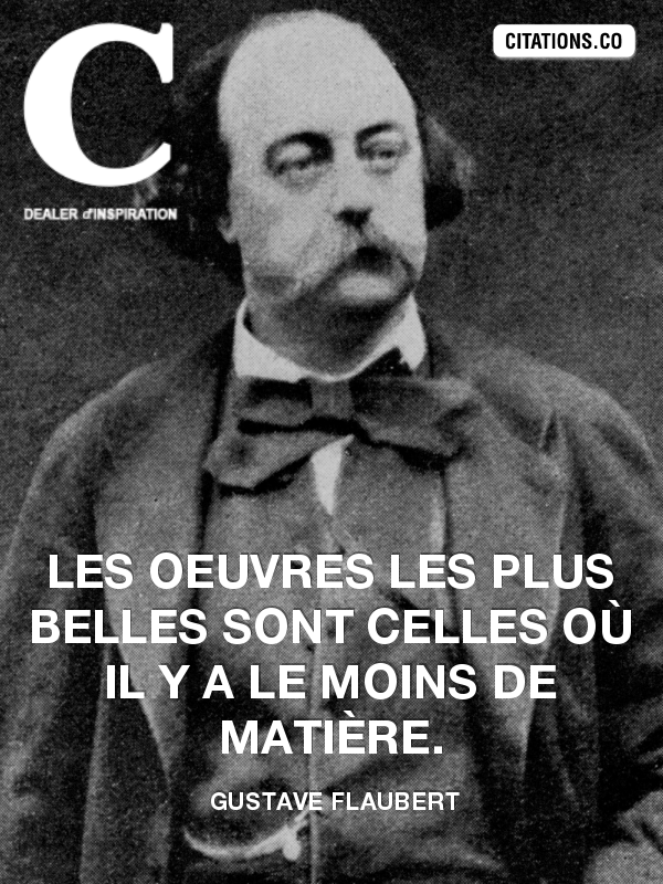 Citation de gustave flaubert-22100364