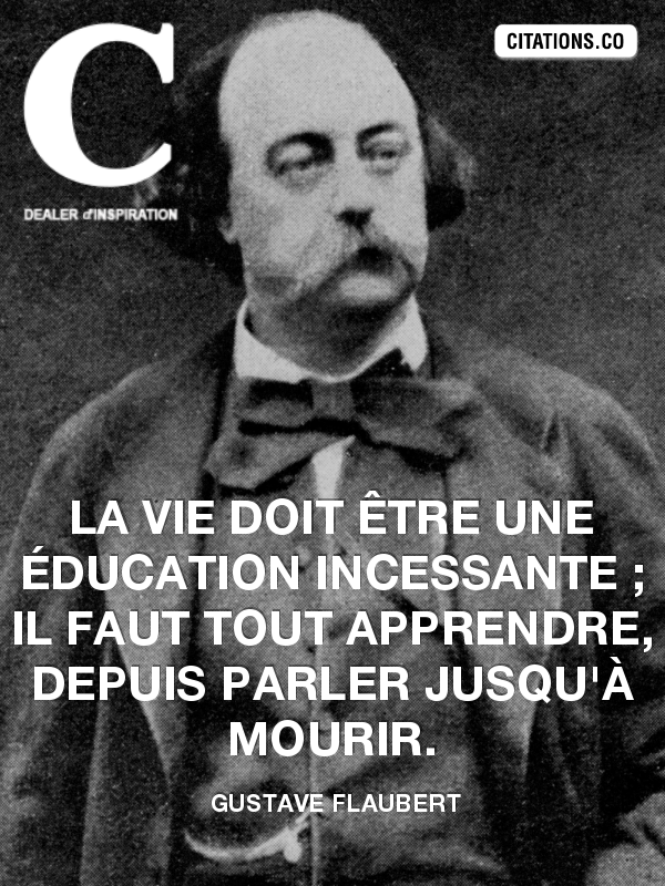 Citation de gustave flaubert-55400580