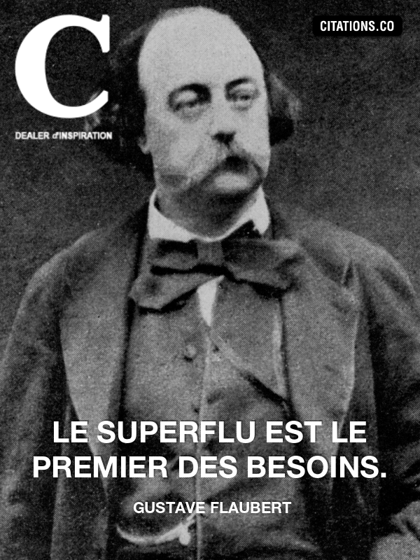 Citation de gustave flaubert-6474156