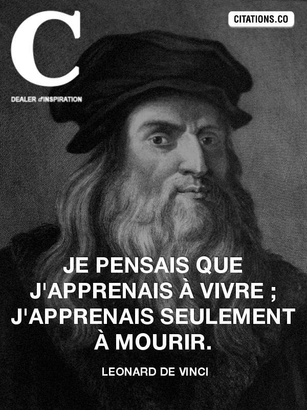 Citation de leonard de vinci-8731584