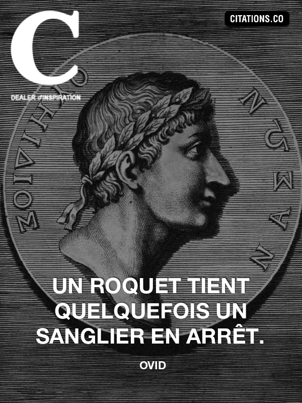 Citation de ovid-6151104